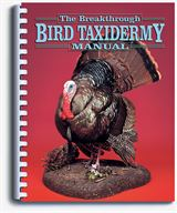 THE BREAKTHROUGH BIRD TAXIDERMY MANUAL