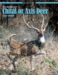 Reference Study: Axis or Chital Deer