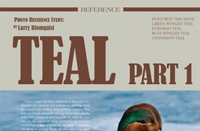 Waterfowl Reference Study: Teals Part 1