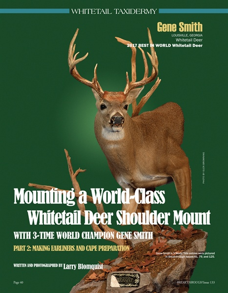 Mounting a World-Class Whitetail Deer Shoulder Mount Part 2: Making Earliners and Cape Preparation
