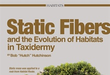 Static Fibers and the Evolution of Taxidermy Habitats