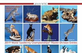 2019 World Taxidermy Championships
