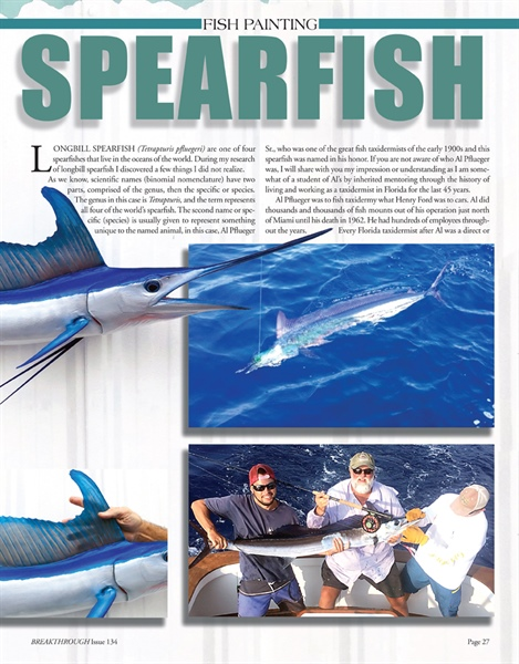 Painting a Longbill Spearfish