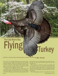 Mounting a Flying Turkey