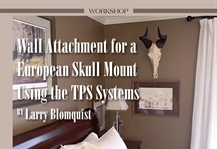 Using the TPS Systems for a European Horn Mount