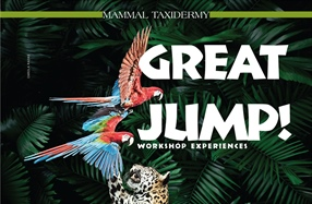 Great Jump! Workshop Experiences
