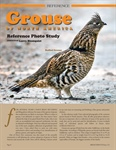 Grouse of North America