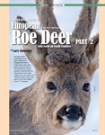 REFERENCE STUDY: Part 2 - European Roe Deer Facial Features