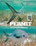 Painting a Permit
